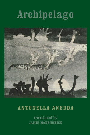 Archipelago by Antonella Anedda - Jamie McKendrick (Editor) - Buy at Amazon