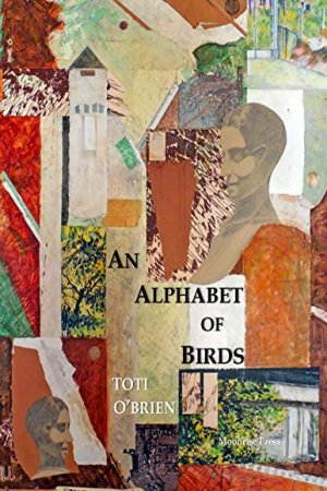 An Alphabet of Birds by Toti O'Brien - Buy at Amazon