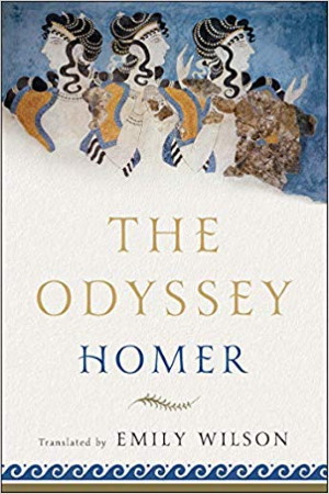 The Odyssey by Homer - Translation Emily Wilson - Buy at Amazon